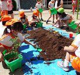 2021年度 第3回幼稚園だより「トマトの苗を植えました」